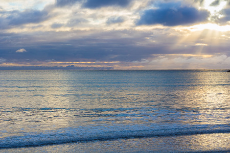 sea landscape, location - Wellington, North Island, New Zealand