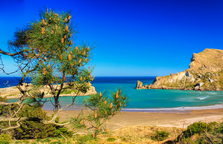 coastal rocky landscape, location - Castlepoint lighthouse walk, North Island, New Zealand Stock Photo