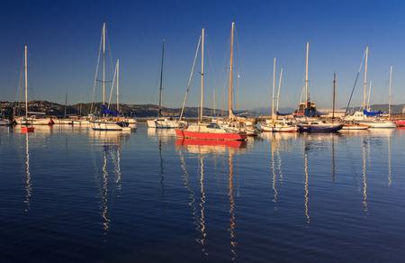 yachts at the harbor, location - Wellington, North Island, New Zealand Stock Photo
