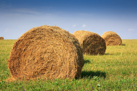autumn landscape with haystack at the farm