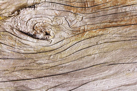brown old plank wooden horizontal texture background