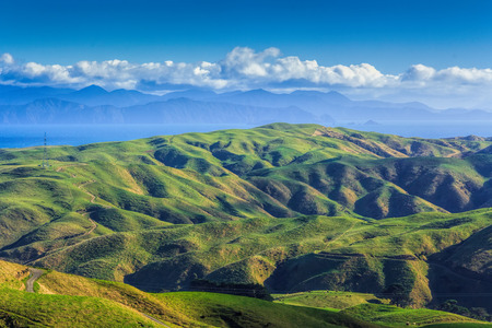 green hills and sea landscape, location - Wellington, North Island, New Zealand