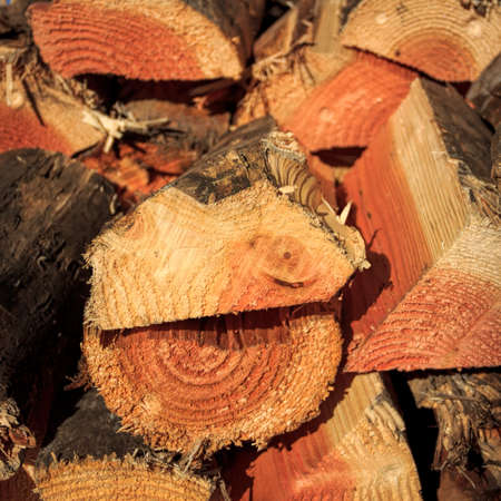 chopped firewood stack image