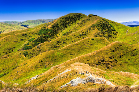 green hills farmland. Location New Zealand, Wellington Stock Photo
