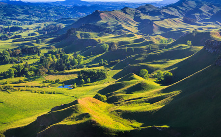 green hills landscape, location - Te Mata Peak, Napier, North Island, New Zealand - aerial view