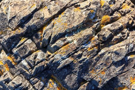rocks background grunge texture, location - New Zealand