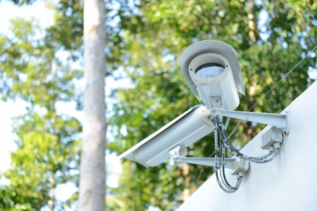 security camera on the fence next to the jungle  Stock Photo - 13836711