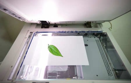 photocopier: Reduce using paper and save the tree concept.