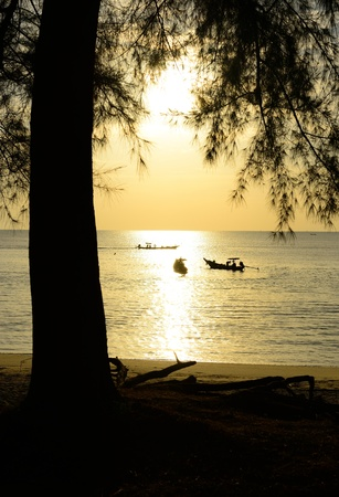Fisherman are taking fishing boat to fish with sunrise background and silhouette tree foreground  photo