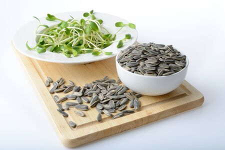 green young sunflower sprouts on salad plate and sunflower seeds on white background Standard-Bild