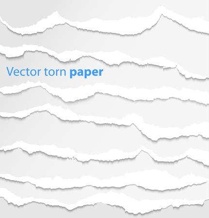 Sammlung von weißen zerrissenes Papier Vektor-Illustration Standard-Bild - 14930785
