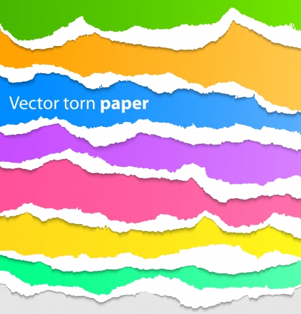 Collection of colorful torn paper  Vector illustration