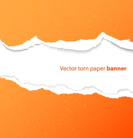 torned: Torn paper rectangle banner with drop shadows  illustration
