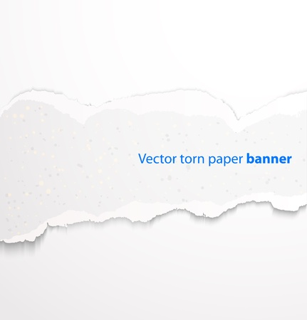 White torn paper rectangle banner with drop shadows. Vector illustration Vectores