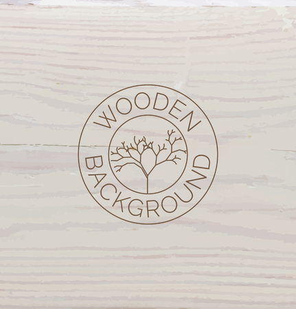 white wood: White wood texture background close up. Vector background