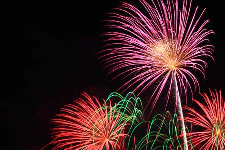 Firework festival Stock Photo - 11698043