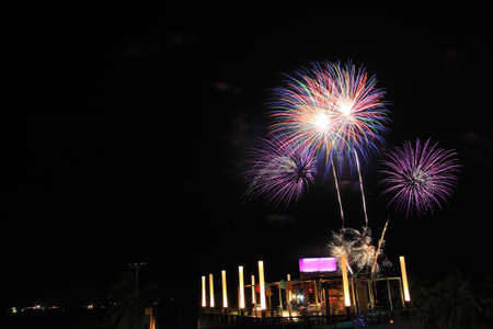 Firework festival Stock Photo - 11698524