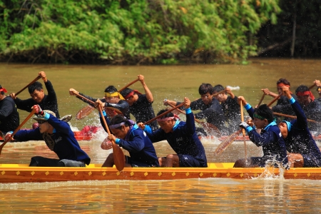 paddler: SARABURI,THAILAND - SEPTEMBER 23 :Unidentified crew in traditional Thai long boats compete during Queen Cup Traditional Long Boat Race Championship on September 23, 2012 in Saraburi,Thailand. Editorial