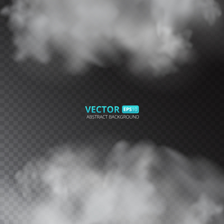 Grey color fog or smoke isolated on transparent background. Vector illustration for your design. Ilustrace