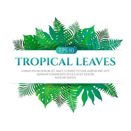 Het tropische ontwerp van het bladerenkader met plaats voor tekst die op witte achtergrond wordt geïsoleerd. Vectorillustratie in de hand getrokken cartoon stijl. Kan worden gebruikt voor het ontwerpen van uw website of gedrukte publicaties en andere.