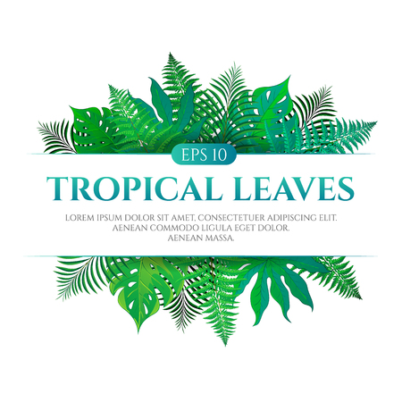 Tropical leaves frame design with place for text isolated on white background. Vector illustration in hand drawn cartoon style. Can be used for design your website or print publications and other. Reklamní fotografie - 77788574
