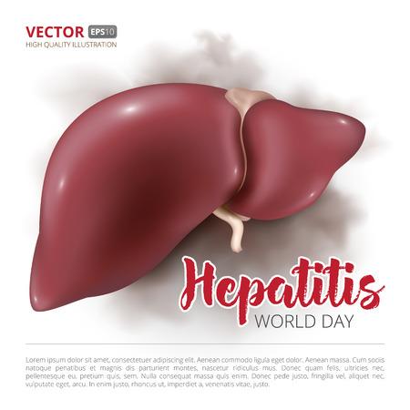 Postkarte oder Banner zum Welthepatitis-Tag. Vector Illustration der menschlichen Leber, die auf weißem Hintergrund lokalisiert wird