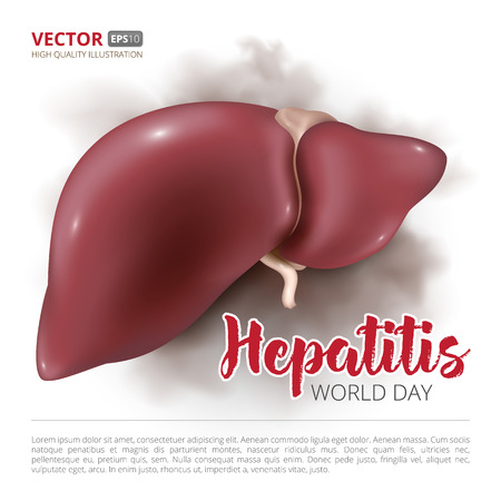 Postcard or banner to the world hepatitis day. Vector illustration of human liver isolated on white background