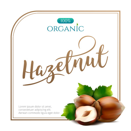 Vector frame of realistic hazelnut with leaves isolated on white background. Square frame for packaging design with place for your text and logo