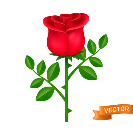 Red rose with green leaves vector icon. Blooming flower close-up cartoon illustration isolated on a white background