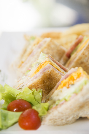 sanwich: Healthy sandwich made of a fresh salad and tomato,Tasty and fresh sandwiches on white plate background Stock Photo
