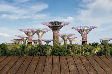 26 February 2018 Landscape of Supertree garden in Singapore.Tourist walking on skywalk in Gardens by the bay famouse place for tourist in Singapore. Redakční