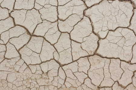 Dry and cracked earth texture Stock Photo - 14808144