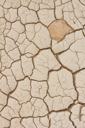 Dry and cracked earth texture photo