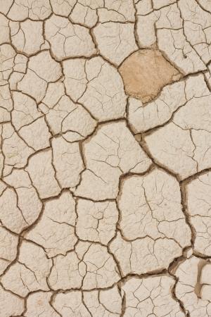 drought: Tierra seca y agrietada textura