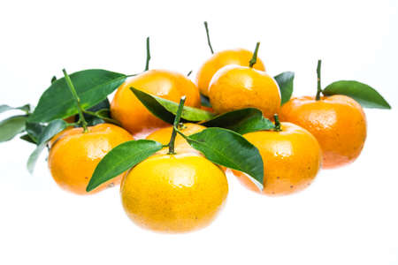 tangerine orange on white background photo