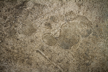 footprint on concrete floor texture photo