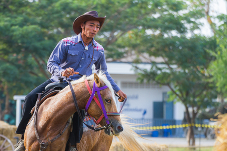 PRACHUAPKHIRIKHAN, THAILAND - DECEMBER 14 : A cowboy in action during on fair of competition the animals 'Livestock Show 2013' on December 14, 2013 in Pranburi, Prachuapkhirikhan, Thailand