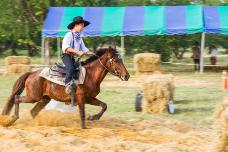 PRACHUAPKHIRIKHAN, THAILAND - DECEMBER 14 : A cowboy in action during on fair of competition the animals Livestock Show 2013 on December 14, 2013 in Pranburi, Prachuapkhirikhan, Thailand