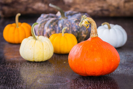 Colorful pumpkins on wooden table photo