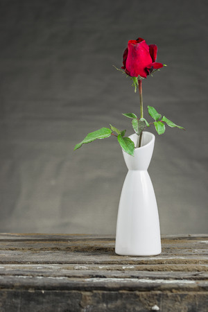 Red rose in vase on wooden table photo