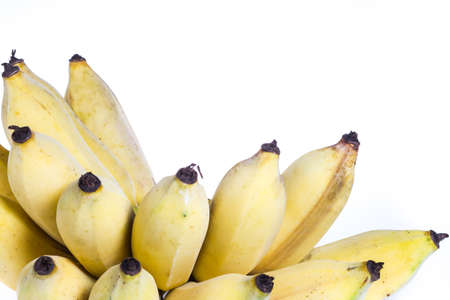 Isolated cultivated banana on white background photo