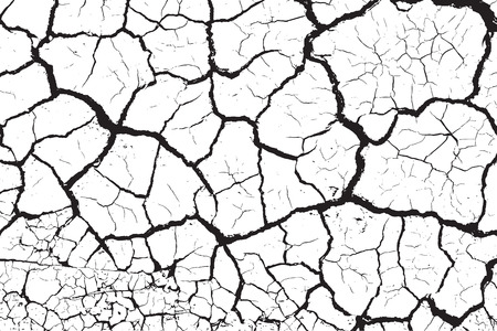 Dry cracked earth texture Vector