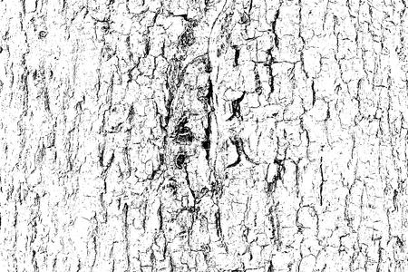 Design Grunge Textures Grey Dark Black and White with Tree Bark Background, Grunge Vector Background illustration