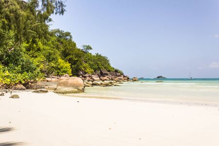 Beautiful beach with white sand and tree in Seychelles