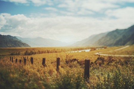 True tilt shift view of abandoned low wooden poles from fencing in foreground, the mouth of the Katun River, multiple mountains, hills, meadow with native grasses and bend of dirt road, Altai, Russia