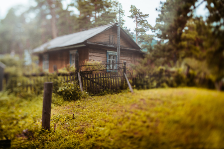 Autumn true tilt-shift landscape with old rural wooden residential house in Altai mountain district of Russia in sparse coniferous forest with meadow in foreground, strong bokeh