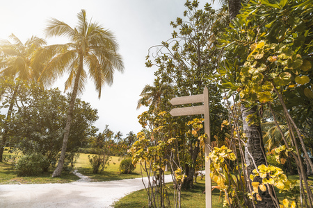 Wide-angle view of the resort footway surrounded by palms, lawns, and other trees, with a blank wooden dual waymark mock-up on the right, for your text message; bright beautiful summer day Reklamní fotografie
