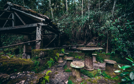 Abandoned dark location in jungle with an ancient wooden well with roof, table and stone backless stools around, with foundations in the form of antique pillars overgrown with moss Banco de Imagens