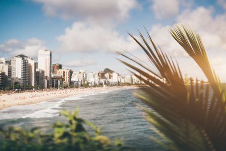 True tilt-shift scenery of city beach in focus stretching into the distance, plenty of hotels and residential houses on the coastline, crowds of sunbathing people; palm in foreground, selective focus