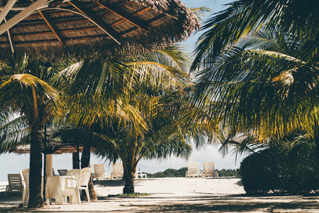 Warm sunny resort with sunshades, plastic chairs and recliners on the coastline, palms, and other tropical plants and trees, coral sand; an island of Maldives during a hot daytime Banco de Imagens